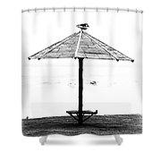 Bird On Umbrella Shower Curtain