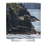 Bird Paradise On Cook Strait Shower Curtain