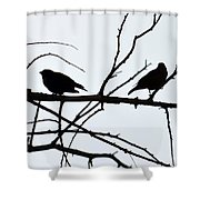 Evening Silhouettes Shower Curtain