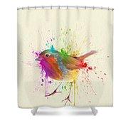 Bird Study Shower Curtain