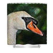Bird - Swan - Mute Swan Close Up Shower Curtain