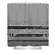 Bird Train Alviso 2 Shower Curtain