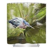 Bird Whirl Shower Curtain