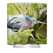 Bird Whirl2 Shower Curtain