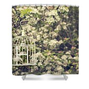 Birdcage In Blossom Shower Curtain