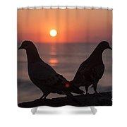 Birds At Sunrise Shower Curtain by Nelson Watkins