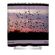 Birds At Sunrise Poster Shower Curtain