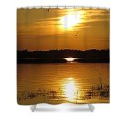 Birds At Sunset Shower Curtain