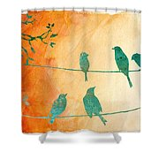 Birds Gathered On Wires-5 Shower Curtain