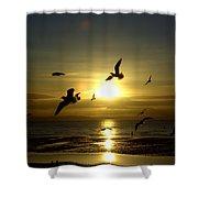 Birds Gathering At Sunset Shower Curtain