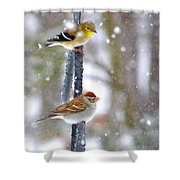 Birds In A Snowstorm Shower Curtain