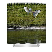 Birds In Fight Shower Curtain