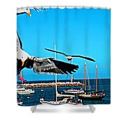 Birds In Paradise Shower Curtain