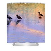 Birds In The Camargue Shower Curtain