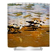 Birds In The Surf Shower Curtain