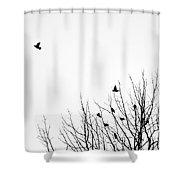 Birds In Tree Shower Curtain