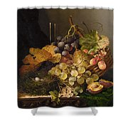Birds Nest Butterfly And Cherries Shower Curtain