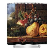 Birds Nest Butterfly And Fruit Shower Curtain by Edward Ladell