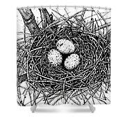 Birds Nest Shower Curtain