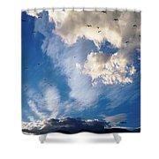 Birds Of Flight Shower Curtain