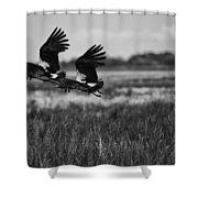 Birds Of The Wetlands V12 Shower Curtain