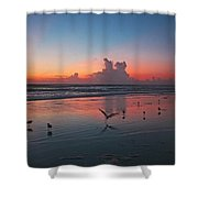 Birds On Beach Shower Curtain