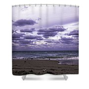 Birds On The Beach Shower Curtain