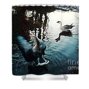 Birds On The Mill Pond Shower Curtain
