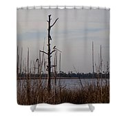 Birds On The River Shower Curtain