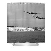 Birds Over The Cliffs  Shower Curtain