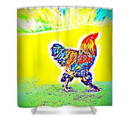 Who Is Afraid Of The Birdy Boss  Shower Curtain