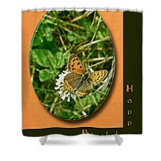 Birthday Greeting Card - American Copper Butterfly Shower Curtain