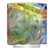 Birthday Party Shower Curtain