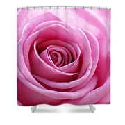 Birthday Pink Shower Curtain