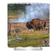 Bison Mud Shower Curtain