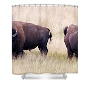 Bison Painting Shower Curtain