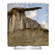 Bisti De-na-zin Wing Shower Curtain