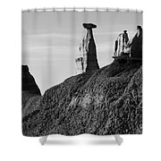 Bisti Land Form 1 Shower Curtain
