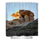 Bisti Land Form 2 Shower Curtain