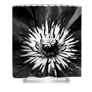 Black And White Clematis Shower Curtain