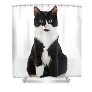 Black & White Cat Shower Curtain