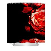 Black And Rose Shower Curtain