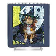 Black And Tan Chihuahua - Such A Good Little Witch Shower Curtain