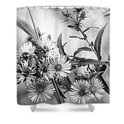 Black And White Asters Shower Curtain