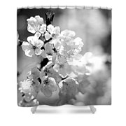 Black And White Blossoms Shower Curtain