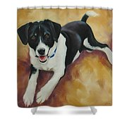 Black And White Dog Shower Curtain