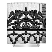 Black And White Ironwork Shower Curtain by Alys Caviness-Gober