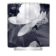 Black And White Lotus Shower Curtain