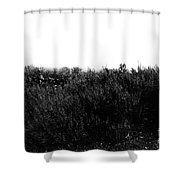 Black And White Magic V2 Shower Curtain
