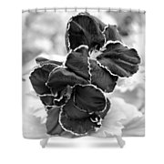 Black And White Maui Flowers Shower Curtain